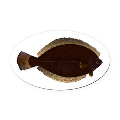 Winter Flounder Oval Car Magnet