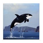 Orca Breaching Tile Coaster
