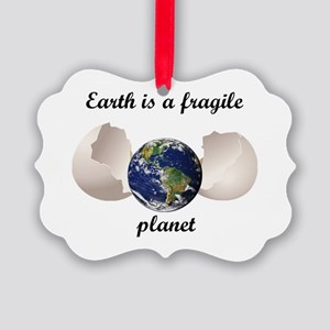 Earth is a fragile planet Picture Ornament