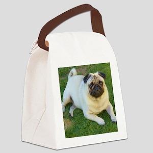 Pug lying down Canvas Lunch Bag