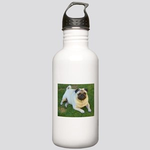Pug lying down Stainless Water Bottle 1.0L