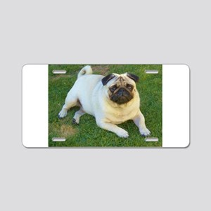 Pug lying down Aluminum License Plate