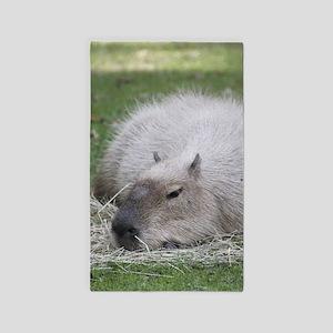 Capybara 215 A Area Rug