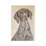 German Shorthaired Poin Rectangle Magnet (10 pack)