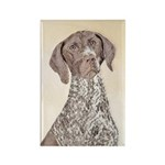 German Shorthaired Poi Rectangle Magnet (100 pack)
