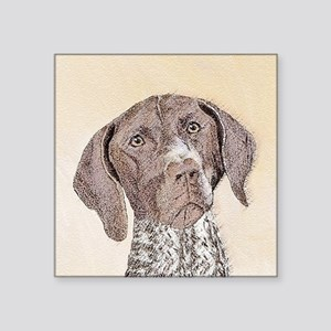 "German Shorthaired Pointer Square Sticker 3"" x 3"""