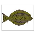 Pacific Halibut Posters