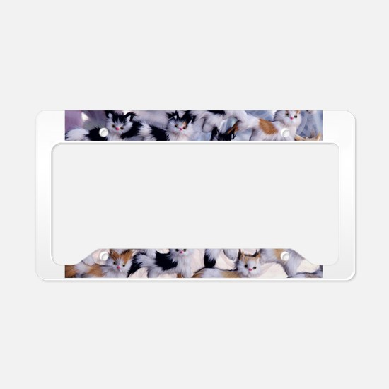 Funny Crazy cat lady License Plate Holder