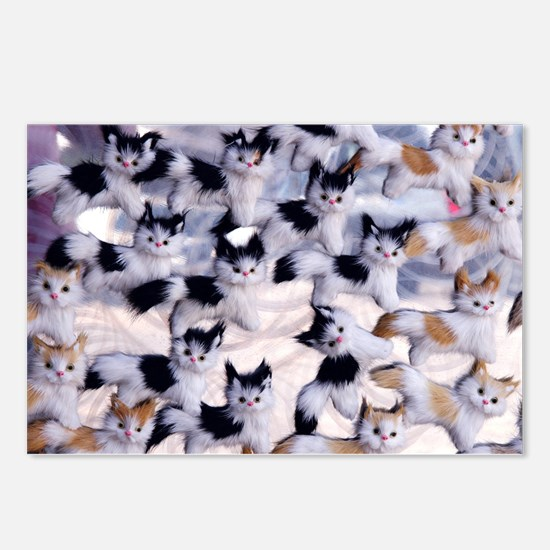 Cool Lol cat Postcards (Package of 8)