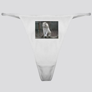 White Tiger Classic Thong