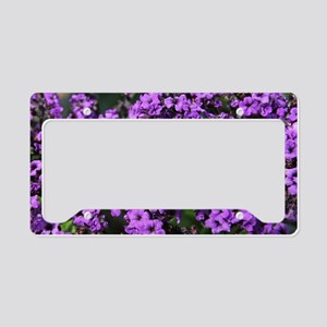Purple Flowers License Plate Holder