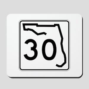 Route 30, Florida Mousepad