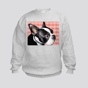 Red Plaid Boston Terrier Kids Sweatshirt