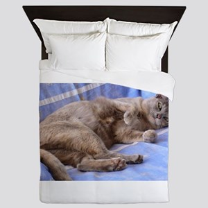 Blue Tortoiseshell Burmese Cat Queen Duvet
