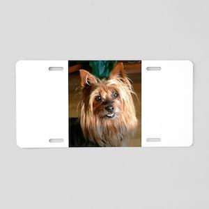 Australian Silky Terrier he Aluminum License Plate