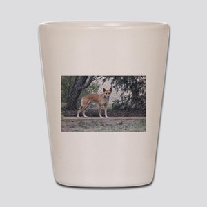 Dingo Shot Glass