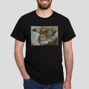 Burmese Cats asleep T-Shirt