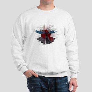 COMIC SPLATTER Sweatshirt