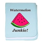 Watermelon Junkie baby blanket
