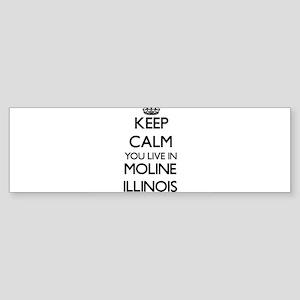 Keep calm you live in Moline Illino Bumper Sticker