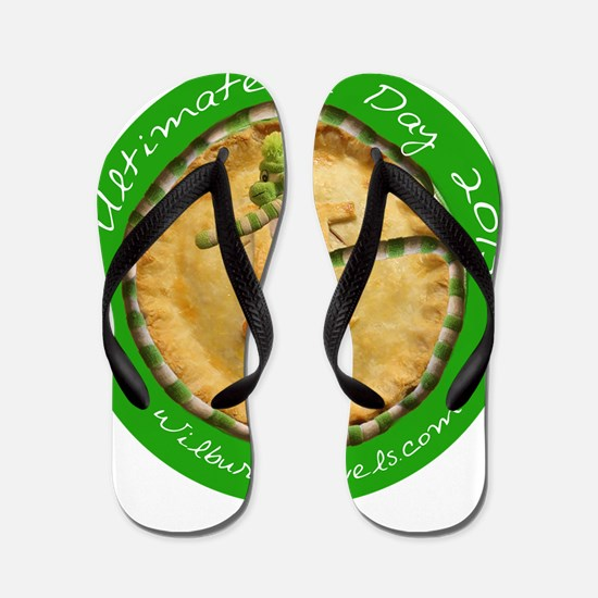 Ultimate Pi Day 2015 Flip Flops
