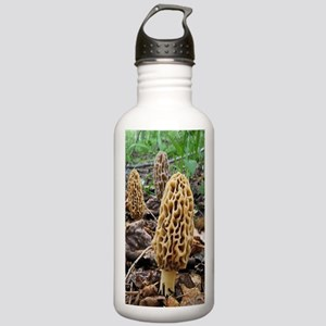 Morels Stainless Water Bottle 1.0L