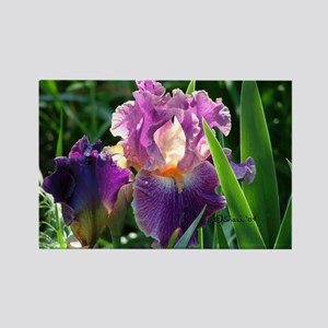 0459 Purple Iris Rectangle Magnet