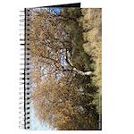Hillside Tree Journal