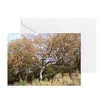 Hillside Tree Greeting Cards (Pk of 10)