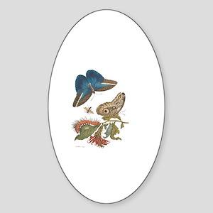 Metamorphosis Sticker (Oval)