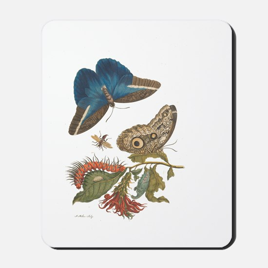 Metamorphosis Mousepad