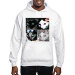 LabRat the Wonder Cat's Funky Hooded Sweatshirt