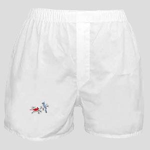 BLUEJAY AND CARDINAL Boxer Shorts