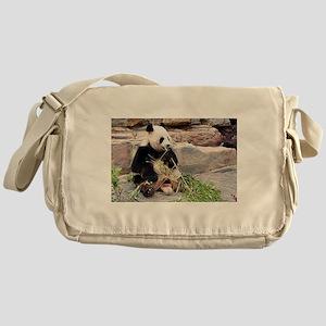 Panda bear eating bamboo at zoo 2 Messenger Bag