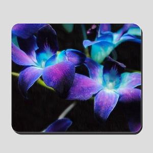 Two Purple Orchids Mousepad