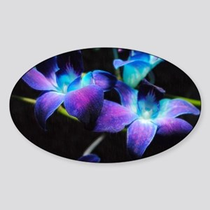 Two Purple Orchids Sticker (Oval)