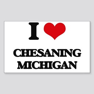 I love Chesaning Michigan Sticker