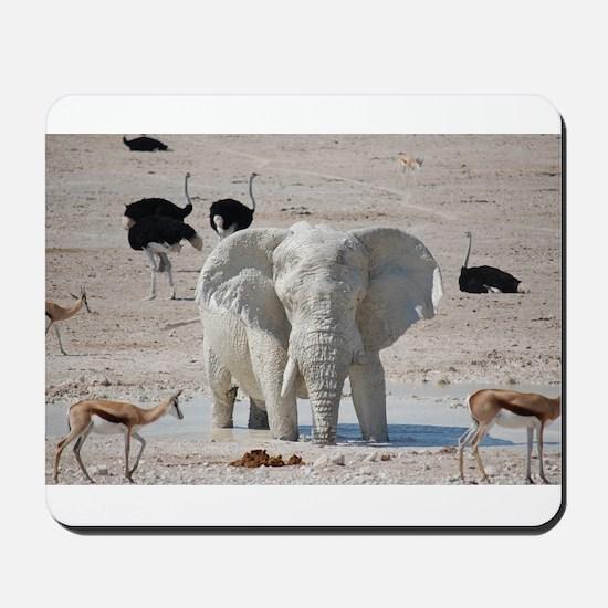White mud elephant Mousepad