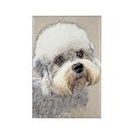 Dandie Dinmont Terrier Rectangle Magnet (10 pack)