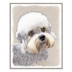 Dandie Dinmont Terrier Posters
