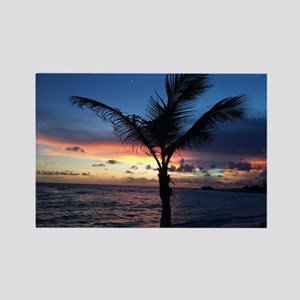 Beach Sunset Palm Tree Rectangle Magnet