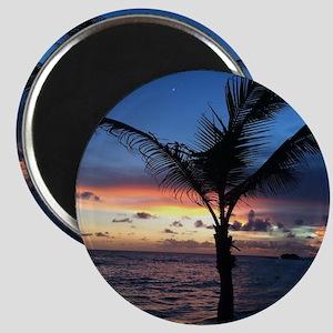 Beach Sunset Palm Tree Magnet