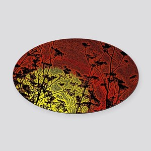 Bloody Sunrise Oval Car Magnet