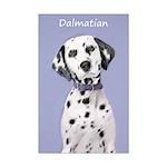 Dalmatian Mini Poster Print