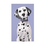 Dalmatian Sticker (Rectangle)