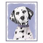 Dalmatian Small Poster