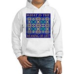 What Is The Meaning Of Life? Hooded Sweatshirt