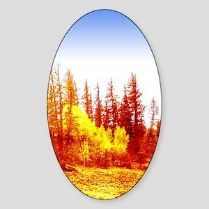 Fire & Ice Oval Sticker