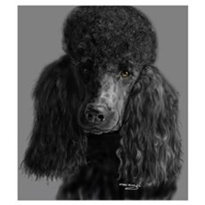 standard poodle black Poster