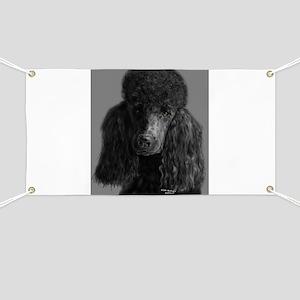 standard poodle black Banner